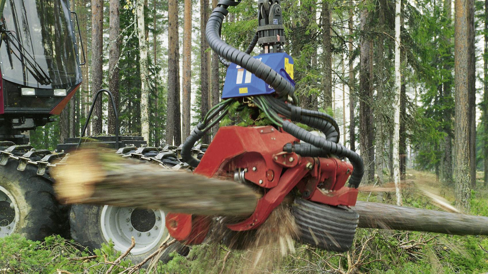 харвестеры и форвардеры: Виды, принцип работы лесозаготовительный и валочной техники
